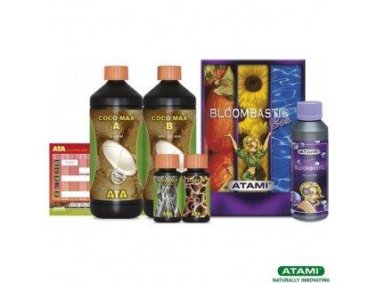 ATA Coco Max Bloombastic 1 Box