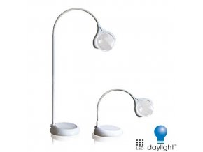 DAYLIGHT COMPANY E25050