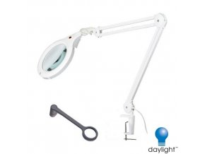 DAYLIGHT COMPANY E22080