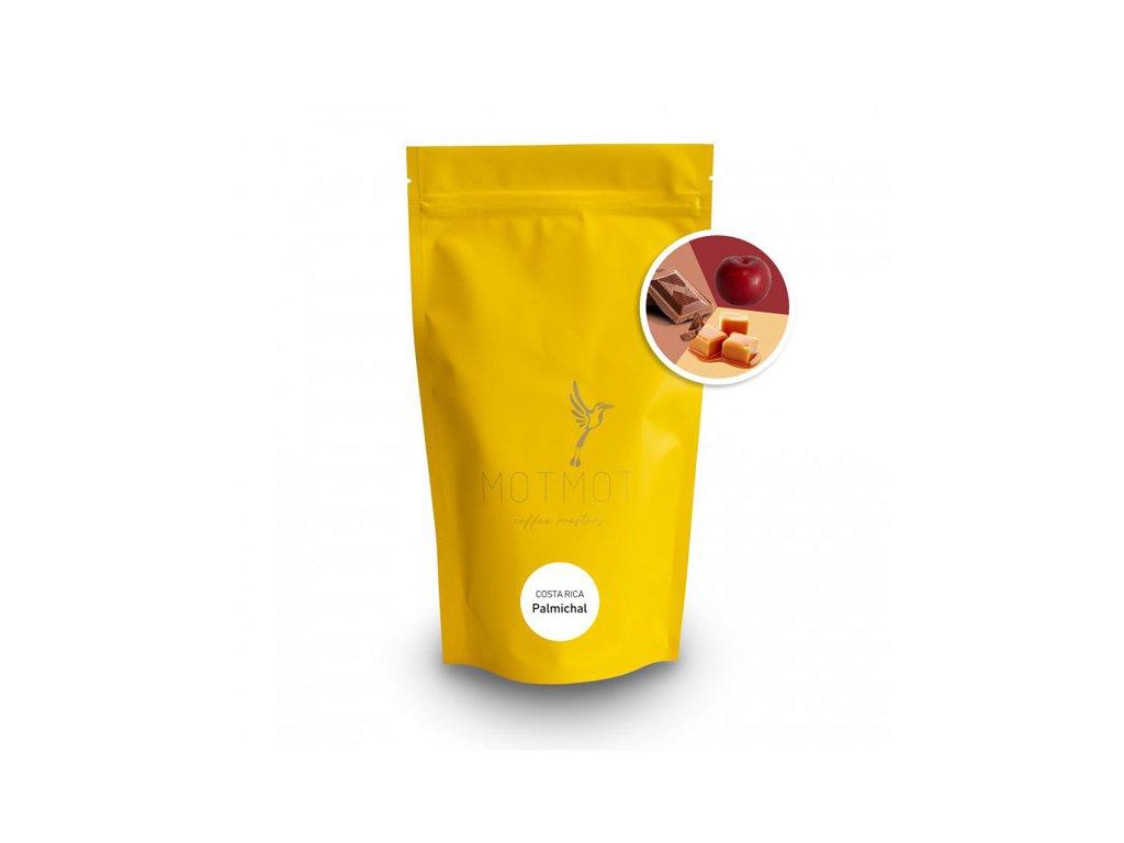 motmot kava costa rica palmichal