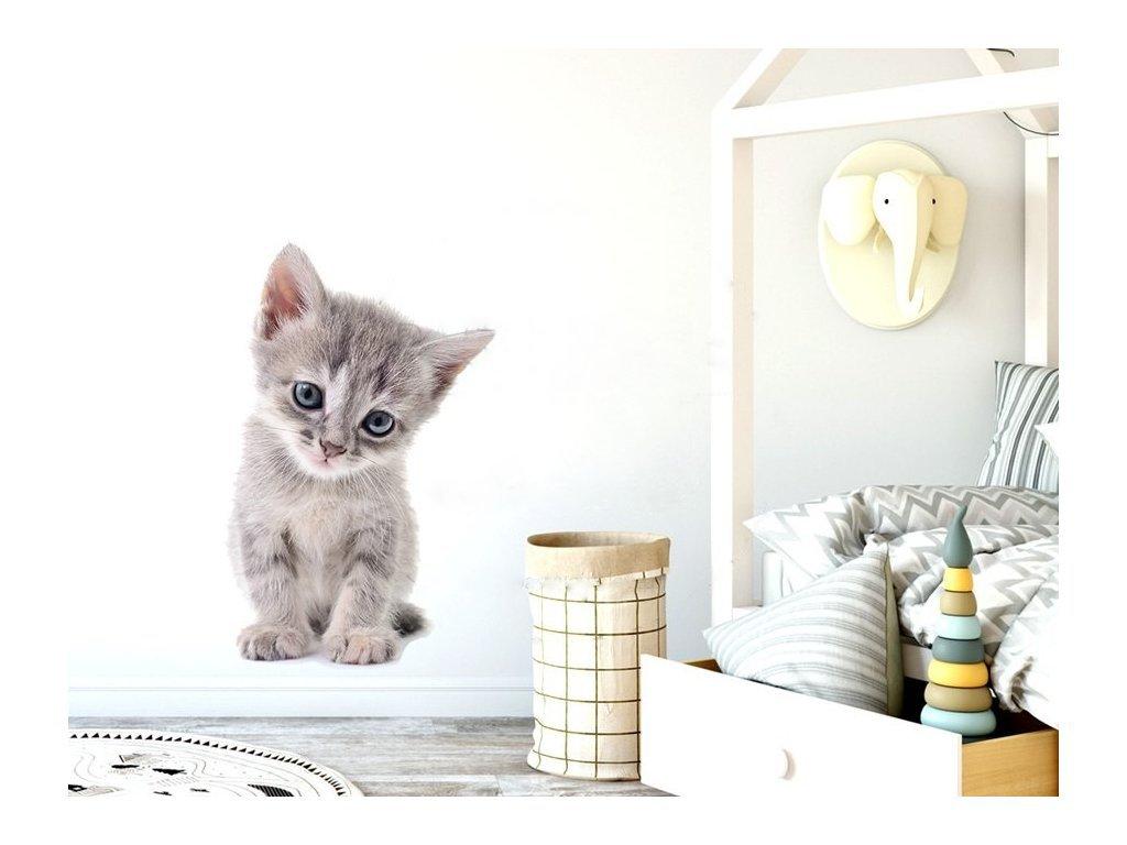 Nálepka s koťátkem velká