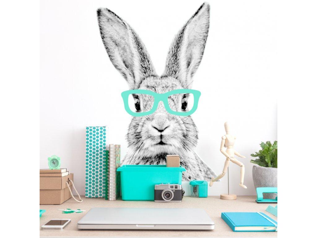 originální samolepka na zeď dětského pokoje, králík s barevnými brýlemi, je použitelná i jako atraktivní fototapeta.