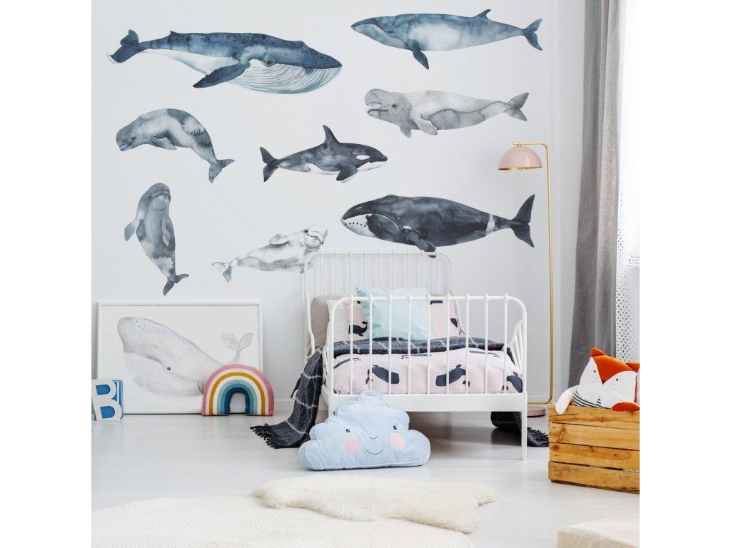 samolepky velryby delfíni