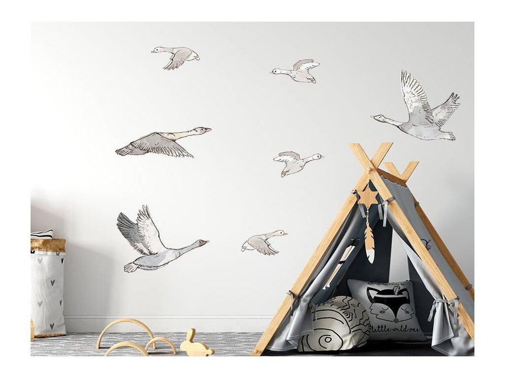 husy na stěně