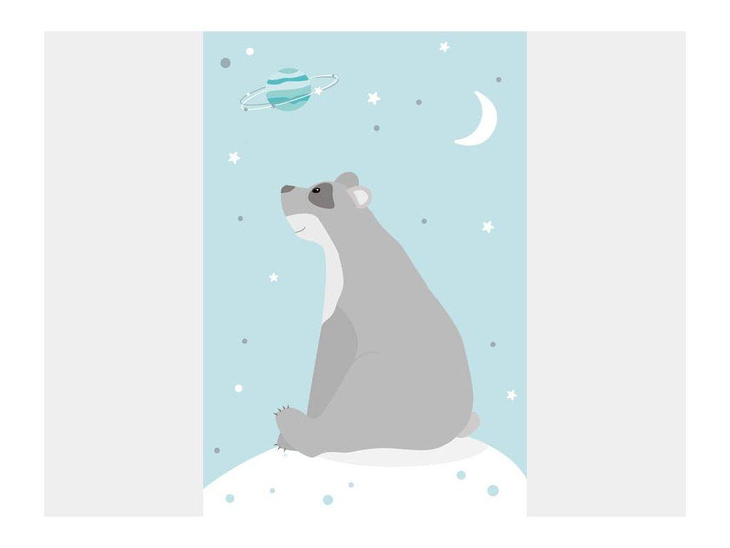 medvěd snílek plakát