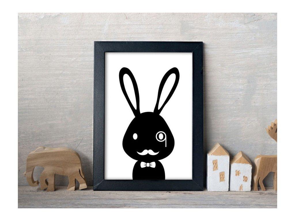 Plakát s králíkem detektiv