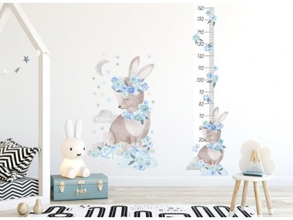 králík metr