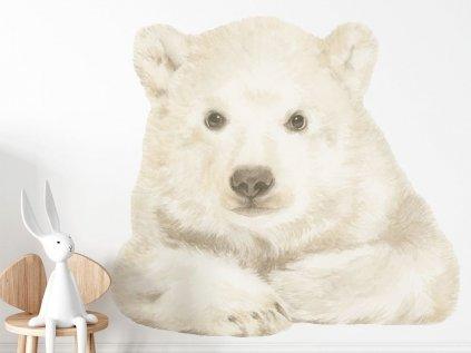 Medvídek - samolepka pro děti