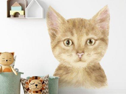 Velká nálepka, tapeta kočička