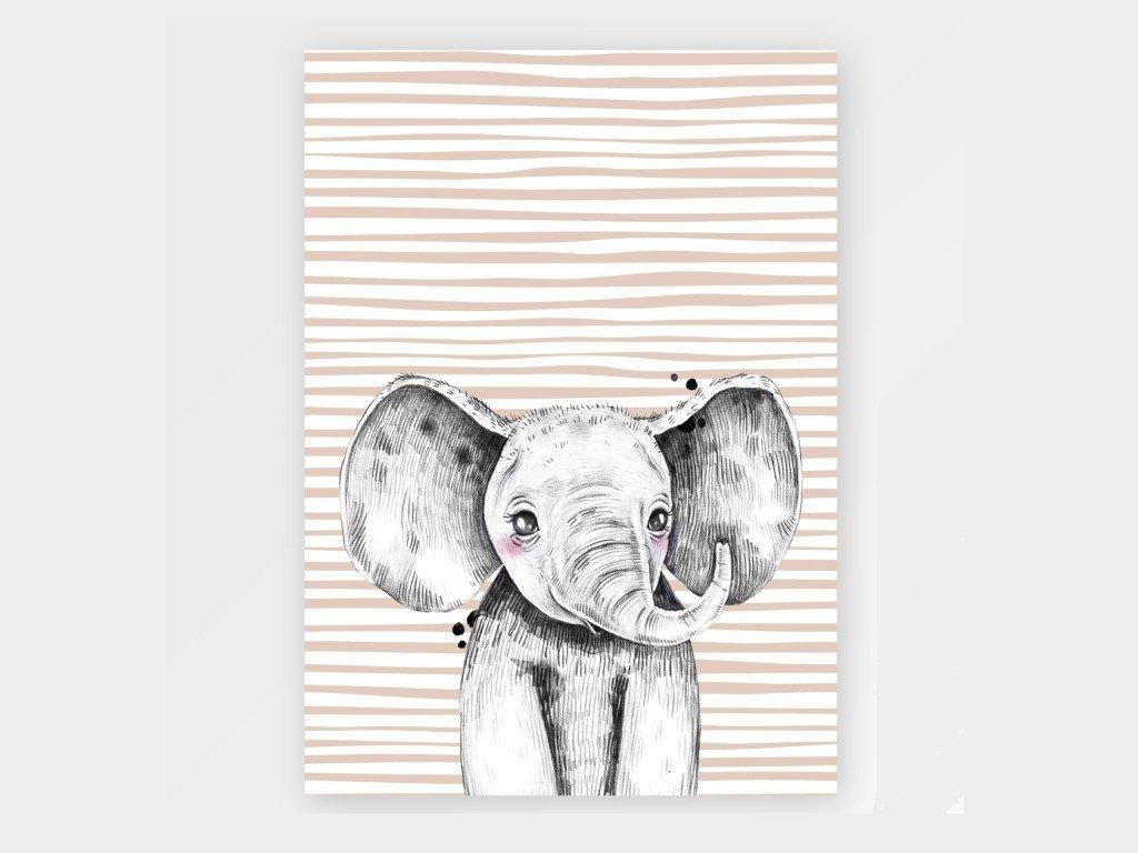 Szürke elefánt plakát gyerekeknek