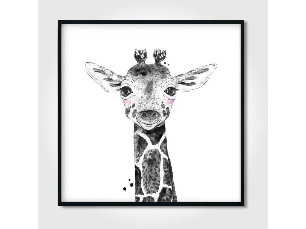 Plakát - Zsiráf