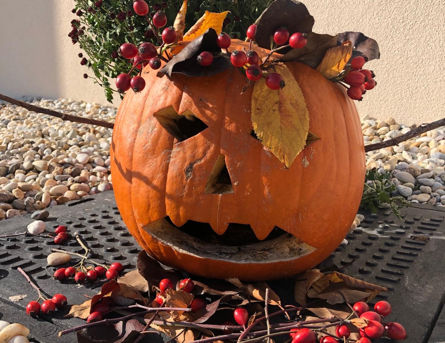 Co slavíte, Dušičky nebo Halloween