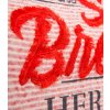 3 SPI 1711 3080 červená detail