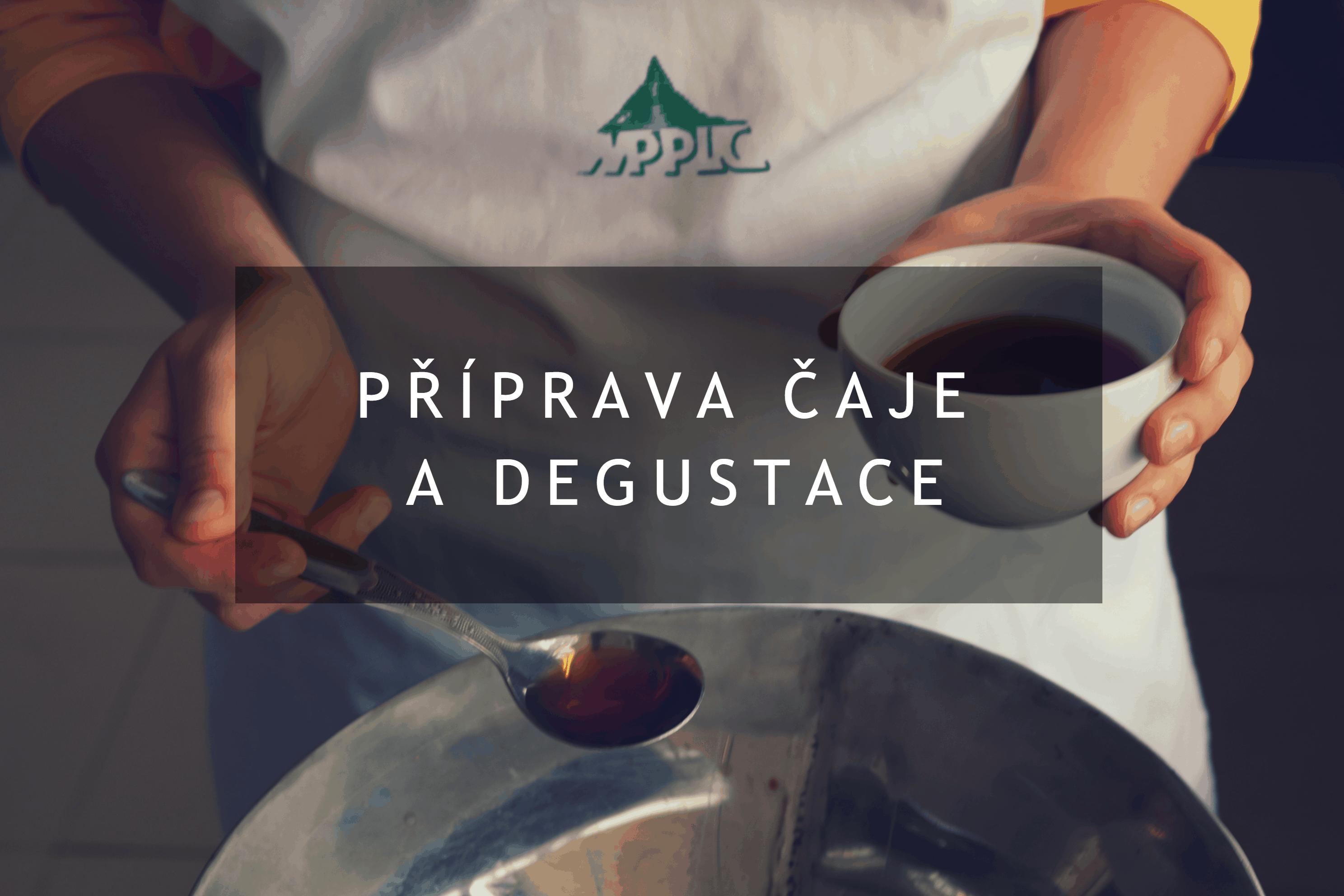 Příprava čaje a degustace