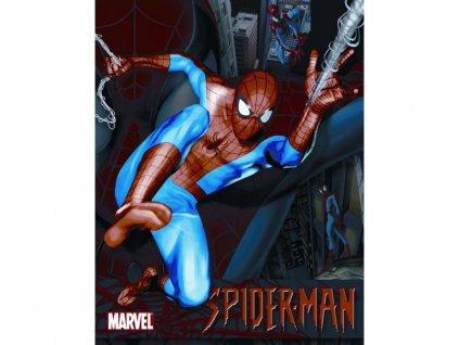 Plechová cedule Desperate MS1219 - Spiderman / 40 x 30 cm