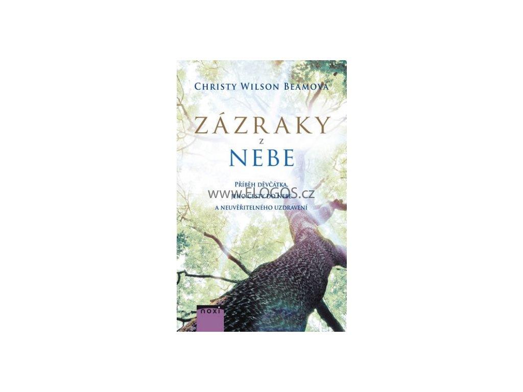 Wilson Beamová Christy - Zázraky z nebe