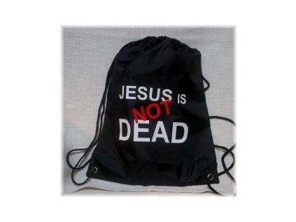 Sportovní kapsa - Jesus is not dead