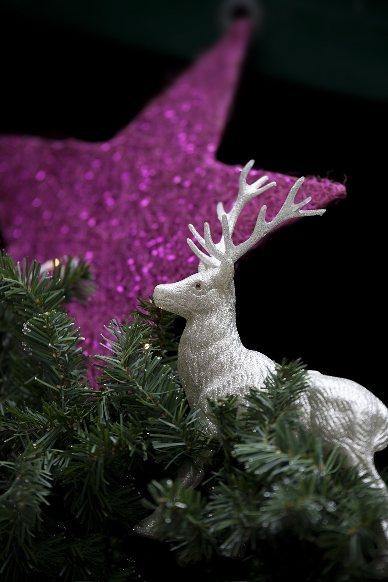 a-christmas-decoration-with-a-star-and-a-deer-PVCDCSG