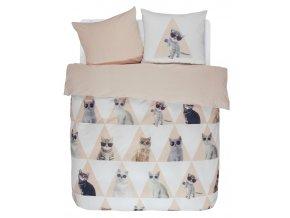 Bavlněné povlečení na postel Cool Cats, sada bavlněného povlečení na dvojlůžko, 100 % bavlna, designové povlečení, 200x220 + 2/60x70, Covers & Co -  200x220+2/60x70