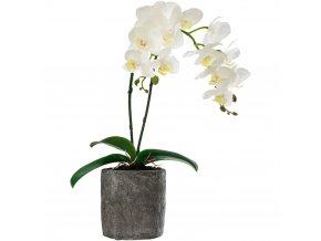 Orchidej v květináči, umělá rostlina na dekoraci místnosti, klidné barvy hodící se do mnoha místností