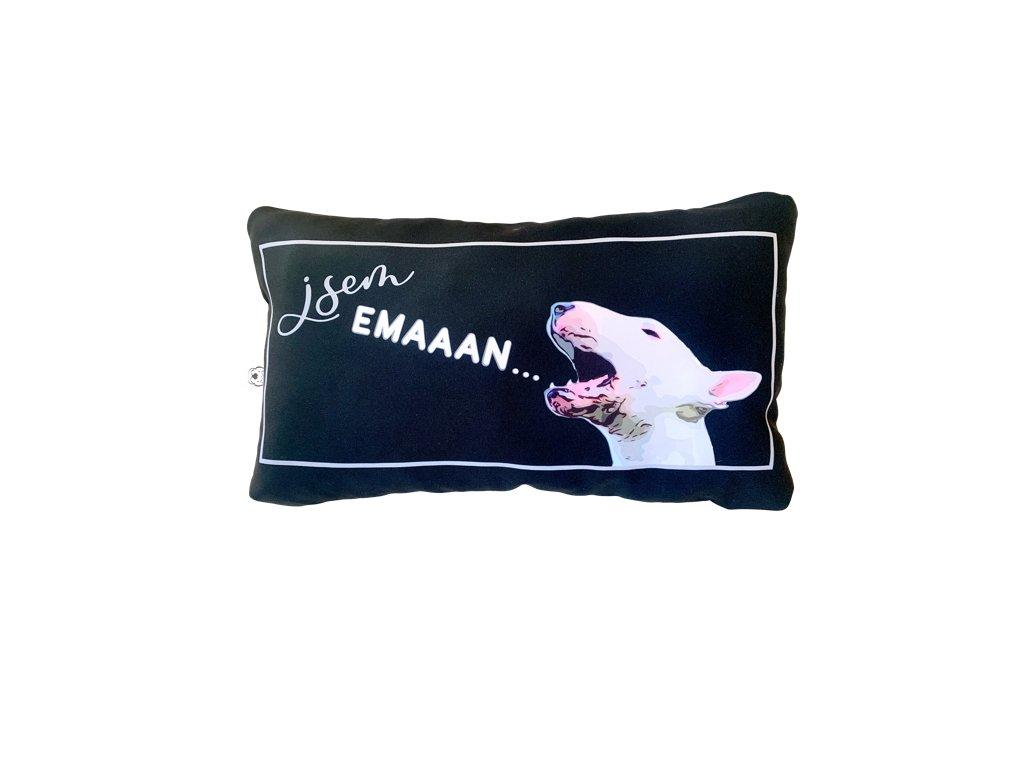 Polštář - jsem EMAN (pillow i am EMAN)