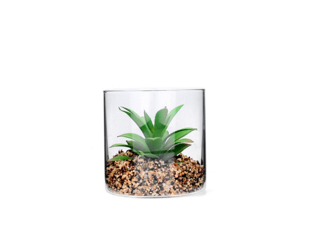 Umělý sukulent ve skleněné vázičce 10 x 10 x 10 cm