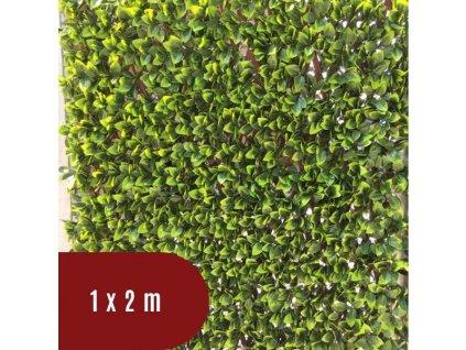 Mřížovina z PVC s listy vavřínu - 100 x 200 cm