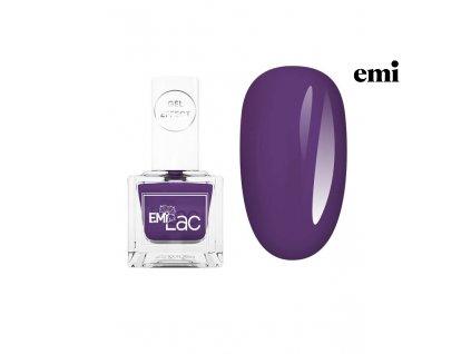048 Violet (1)