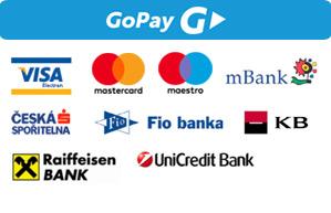Platební metody GoPay