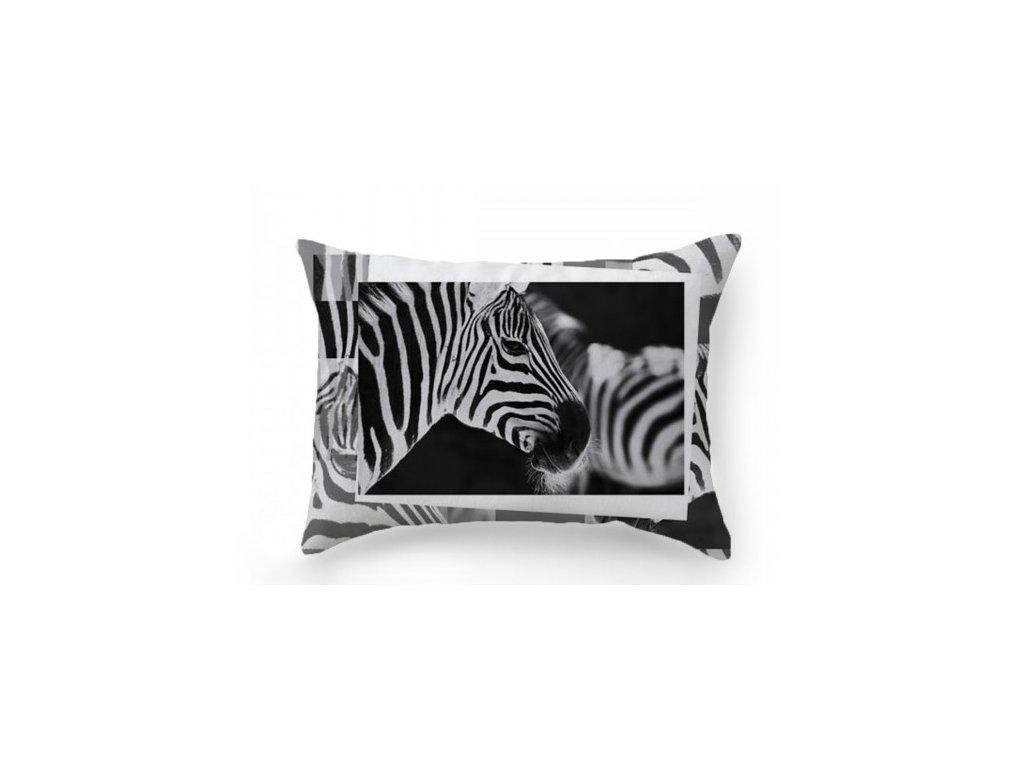 Zebra dekoračný vankúš 50x70 cm