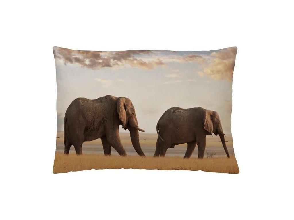 vankúš so slonmi v savane