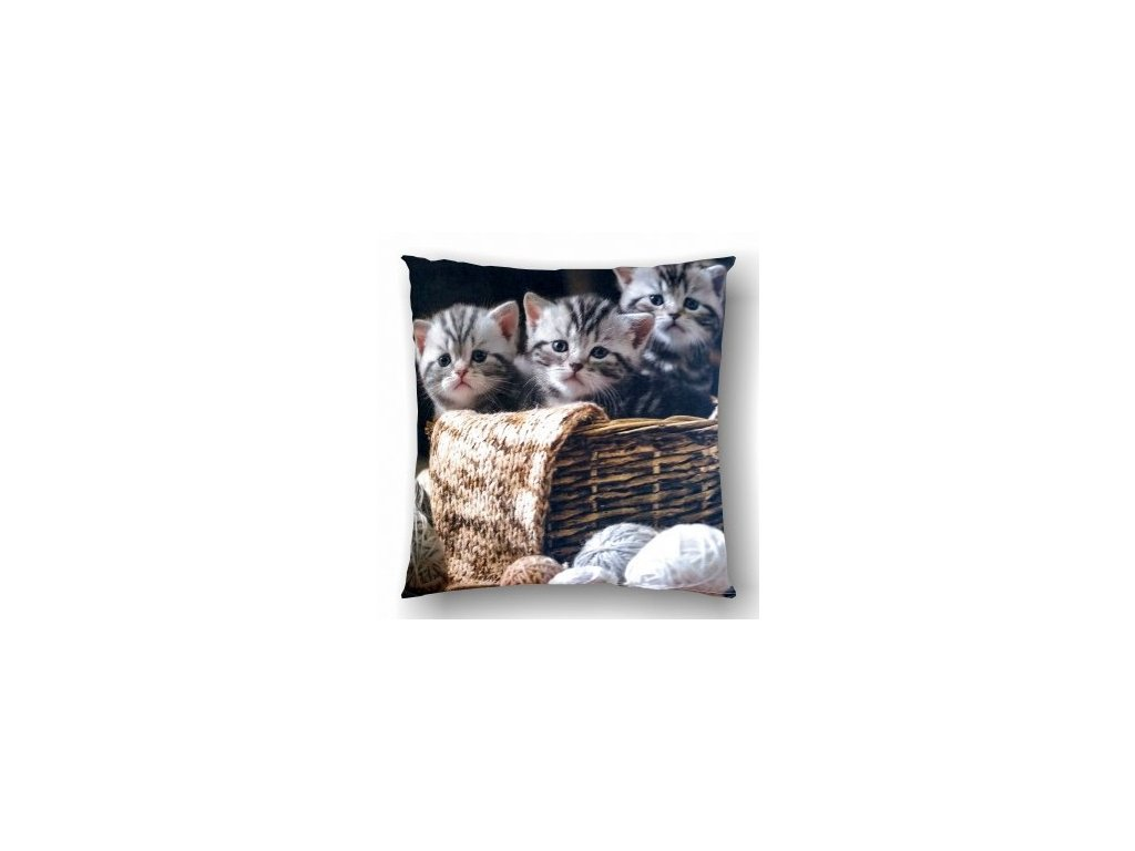 dekoračný vankúš s mačiatkami Kitten Wool