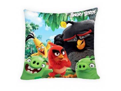 Angry birds 40x40