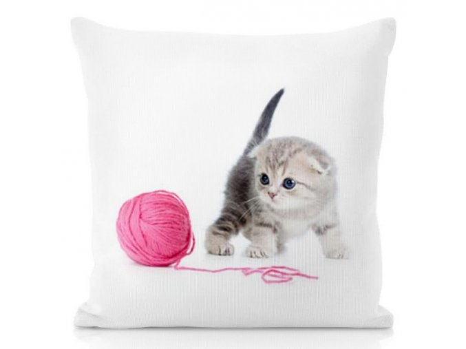 BABY CAT - dekoračný vankúš 50/50 cm