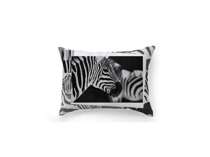 dekoračné vankúše Zebra