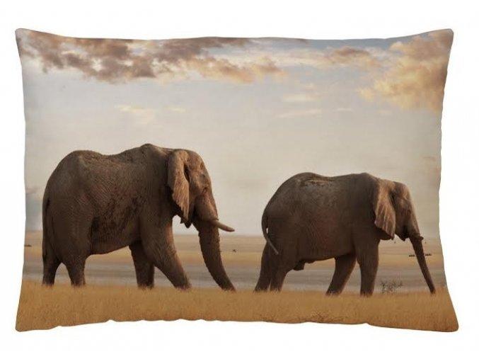 ELEPHANT - dekoračný vankúš