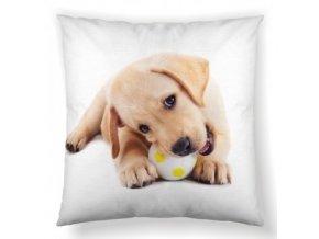BABY DOG - dekoračný vankúš