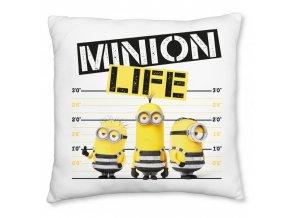Minions life 40x40