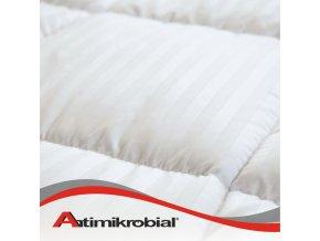 Antimikrobiálne paplóny