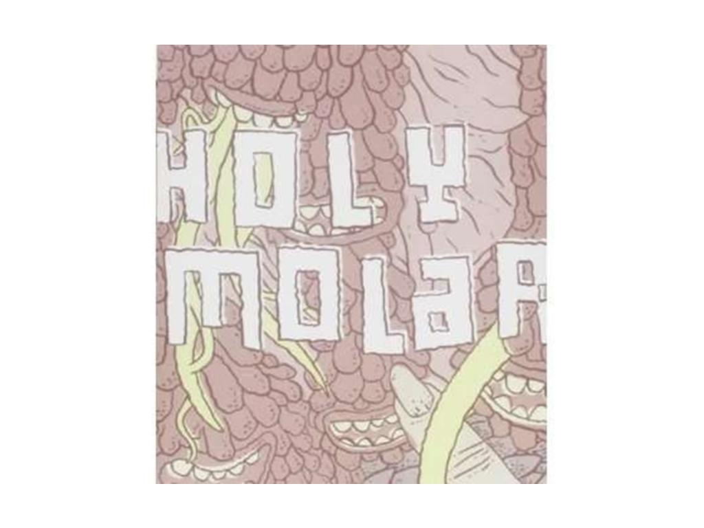 HOLY MOLAR - Dentist The Menace (DVD)
