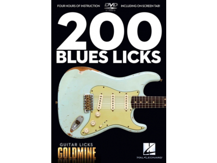 JOHN HEUSSENSTAMM - 200 Blues Licks (DVD)