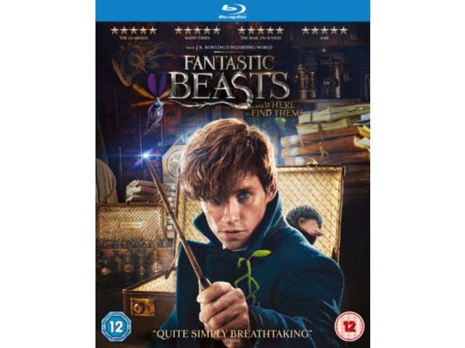 Fantastic Beasts and Where To Find Them (+ Digital Download) [Blu-ray] [2016] (Blu-ray)
