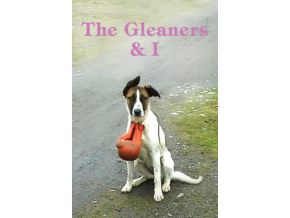 The Gleaners and I (DVD)