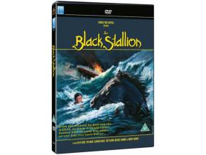 The Black Stallion (DVD)