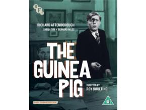 The Guinea Pig (BFI Flipside 041) [Dual Format Edition]