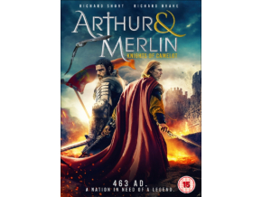 Arthur & Merlin: Knights of Camelot [DVD]