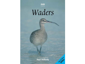 Waders Europe Asia N America Double Dvd (DVD)