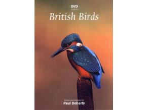 British Birds 3 Dvd Set (DVD)