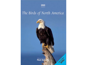Birds Of North America Double Dvd (DVD)