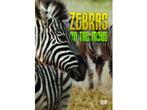 Zebras On The Move (DVD)